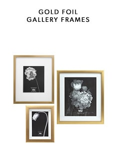 shop our new gold foil gallery frame collection
