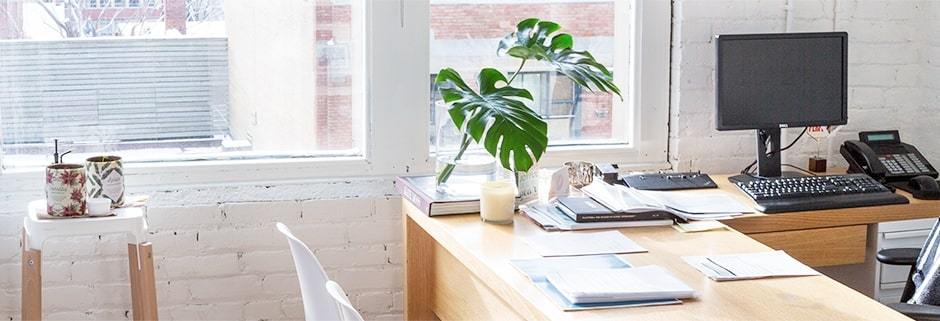 A really nice workspace with natural light and plants