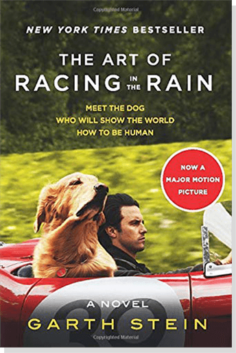 The Art of Racing in the Rain By: Garth Stein