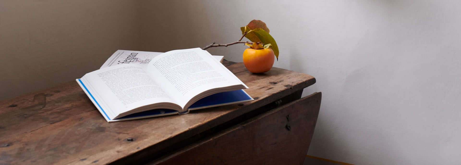A book open on a table with a piece of fruit and a branch beside it.