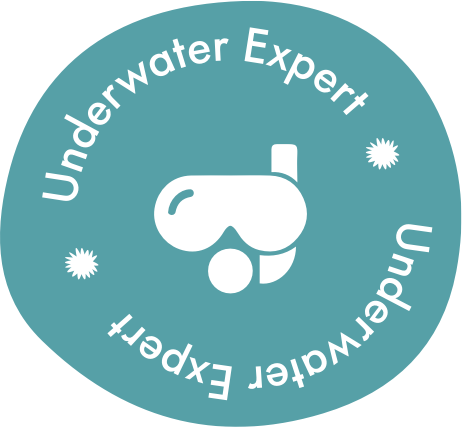 Underwater expert badge