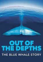 Royal Ontario Museum – Out of the Depths: The Blue Whale Story - Special Offer - Royal Ontario Museum – Out of the Depths: The Blue Whale Story - Special Offer