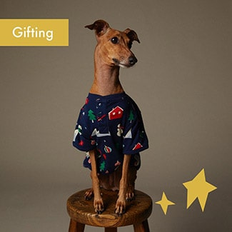 @indigo instagram post: Spoil your pet silly this holiday season with fur-tastic gifts that'll have them barking—or meowing—for joy. We're talki...
